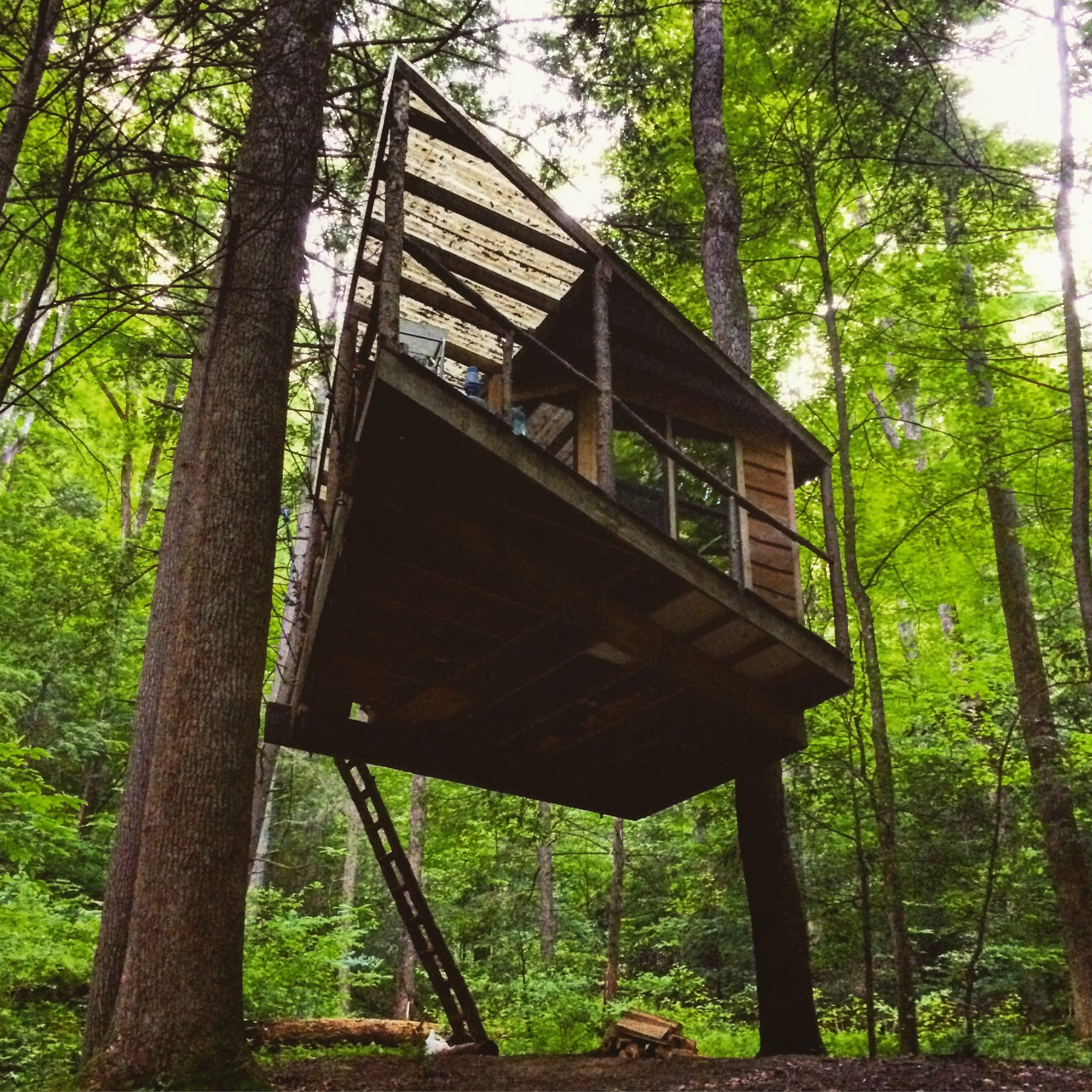 Red River Gorge Cabin Life Treehouse Edition